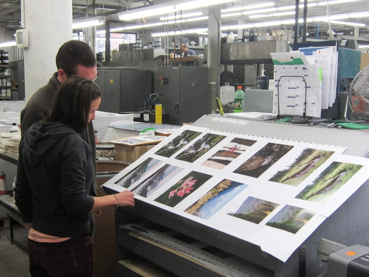 Comparing proofs to a sheet fresh off the press