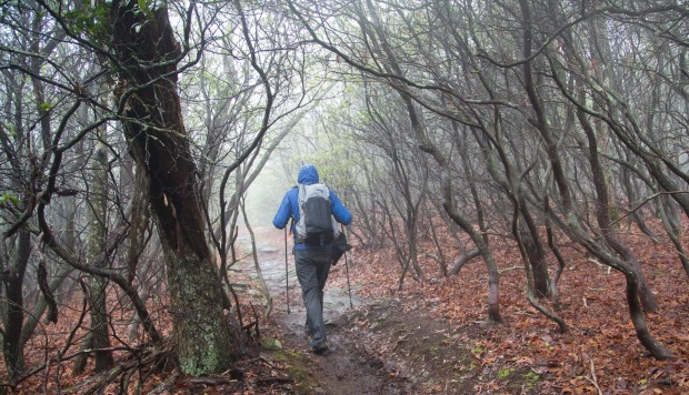 Rainy weather on the Appalachian Trail