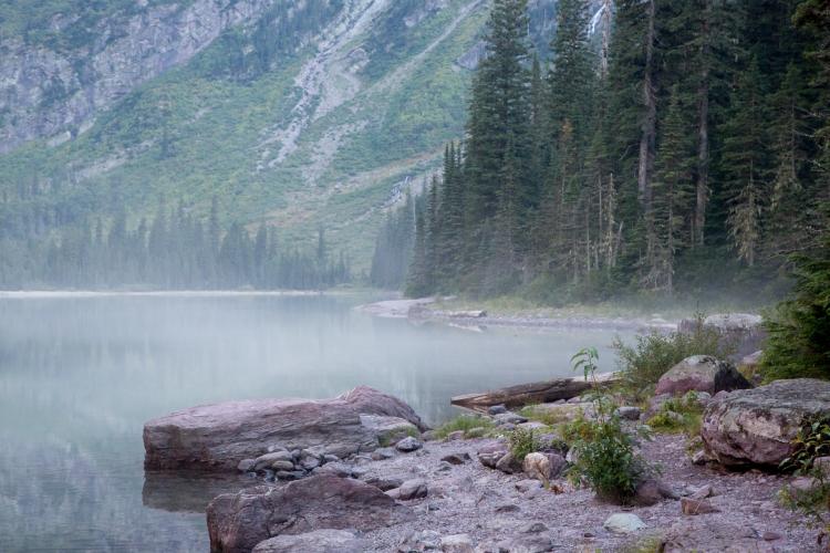 Mist on Avalanche Lake