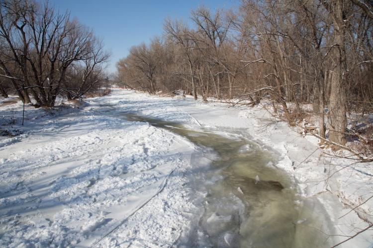 Frozen Poudre River