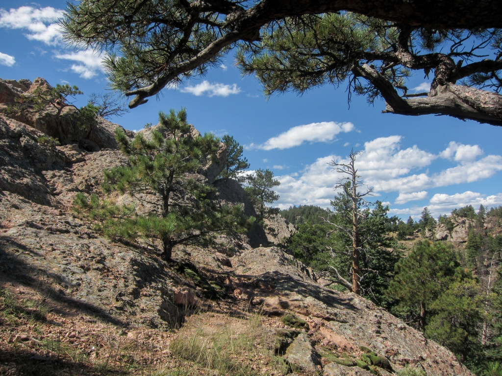 Arthur's Rock Trail near Fort Collins