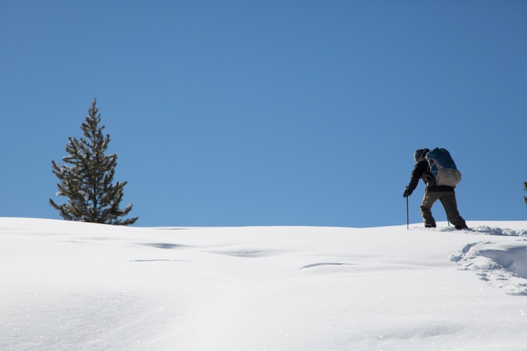 Working hard to snowshoe uphill through powder