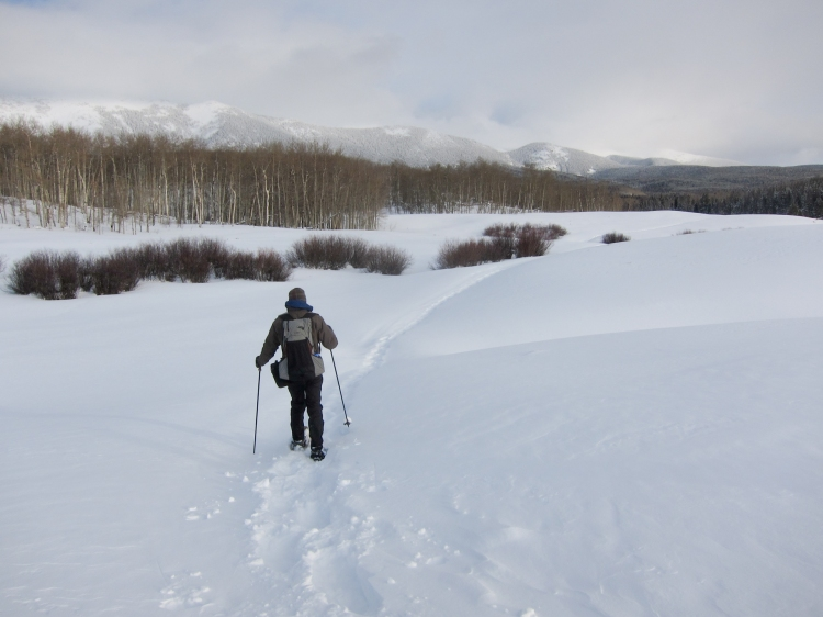 Snowshoeing to North Fork Canadian yurt