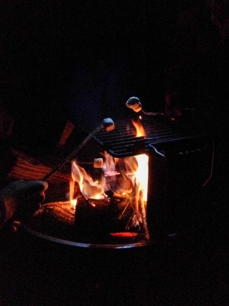 Roasting marshmallows the night before the wedding