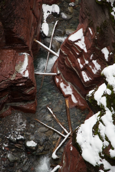 Snow covered logs in Red Rock Canyon